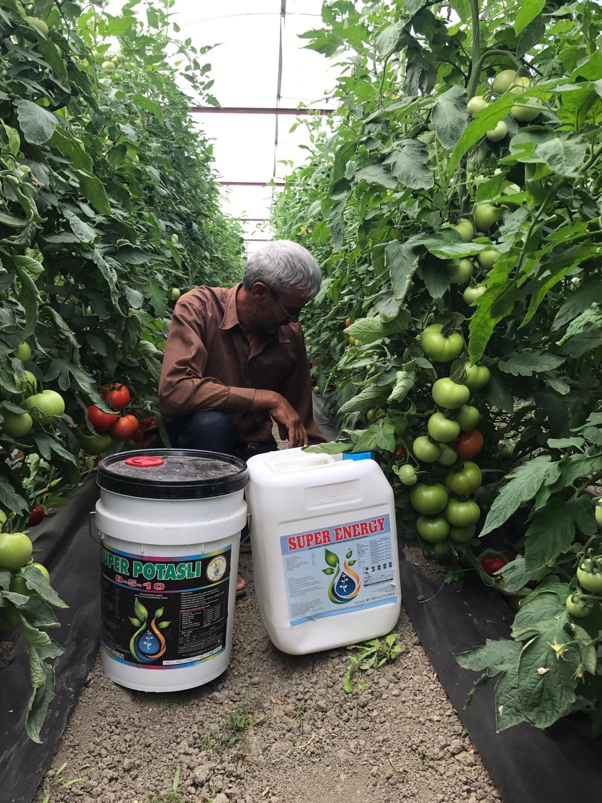 Kumluca Tarım İlaçları Tohum Gübre Kimyevi Maddeler